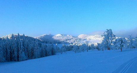 winterlandschaft_pdo