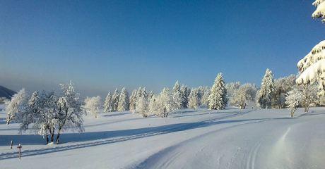 winterlandschaft_pdo_3