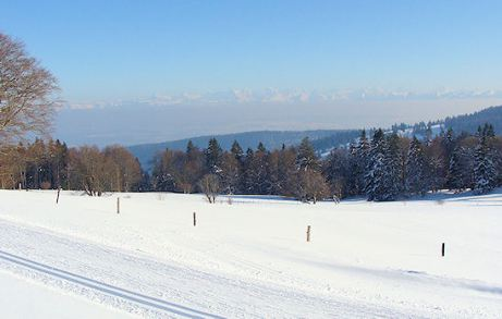 Weitsicht auf das Mittelland und die Alpen