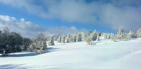 Winterlandschaft mit Wolkenhimmel